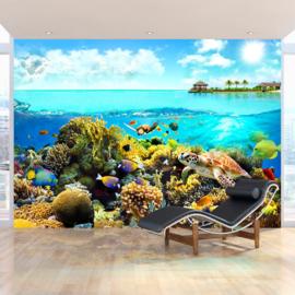 Paradijs Vissen Zee nr 274