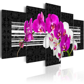 214 Modern Wit Paars Orchidee