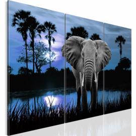 nr 33 Afrika Olifant Blauw