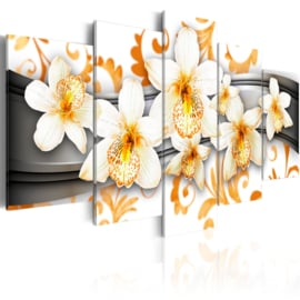 nr11 Modern Orchidee