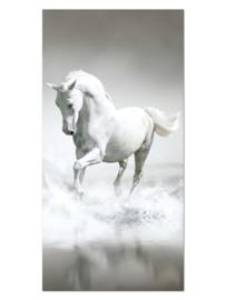 103 Paard Glas Schilderij