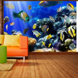 Aquarium Vissen Zee nr 410