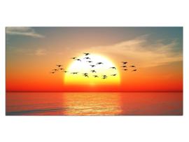 13 Zonsondergang Vogels Zee Glas Schilderij
