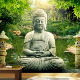 Buddha natuur nr 802