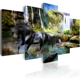 721 Paard Natuur