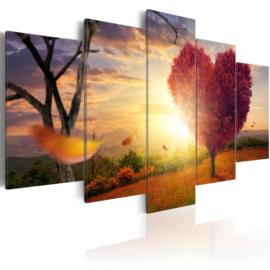371 Hartje Sunset Natuur