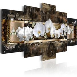 639 Orchidee Bloemen