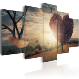 373 Natuur Sunset Hartje
