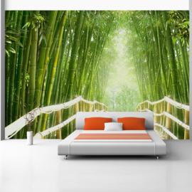 Bamboe Pad nr 404