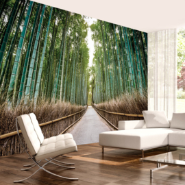 Bamboe pad Bos nr 679