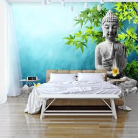 Buddha Boom nr 486