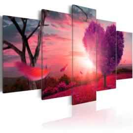 372 Roze Hartje Natuur Sunset