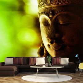 Buddha Hoofd nr 866