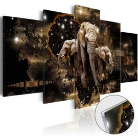 3 Olifant Afrika Acrylglas Schilderij