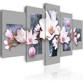 113 Magnolia Bloemen
