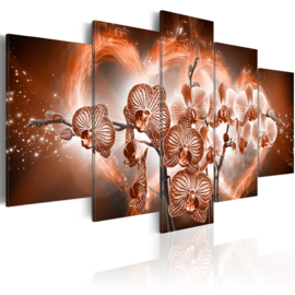 635 Modern Orchidee Hartje
