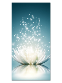 101 Lotus Bloem Glas Schilderij