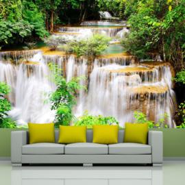 Waterval Natuur nr 408