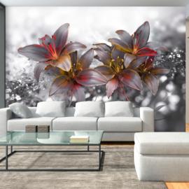 Bloemen Modern nr 542