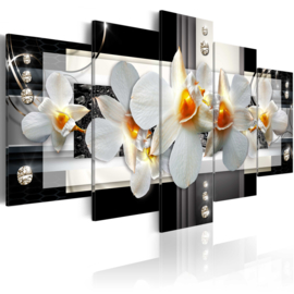 238 Orchidee Modern