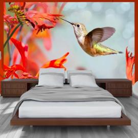 Vogel Bloemen nr 204