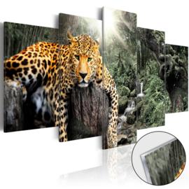 10 Luipaard Natuur Acrylglas Schilderij