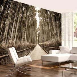 Bamboe Bos Pad nr 680