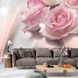 Roze Rozen nr 544