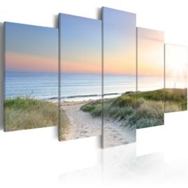 946 Noordzee Duinen  Strandpad