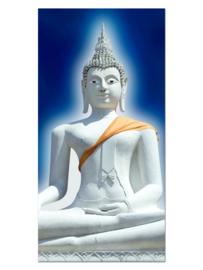 147 Buddha Glas Schilderij