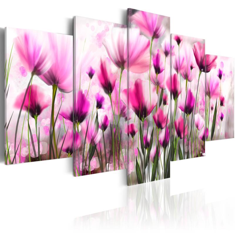 511 Roze Bloemenveld