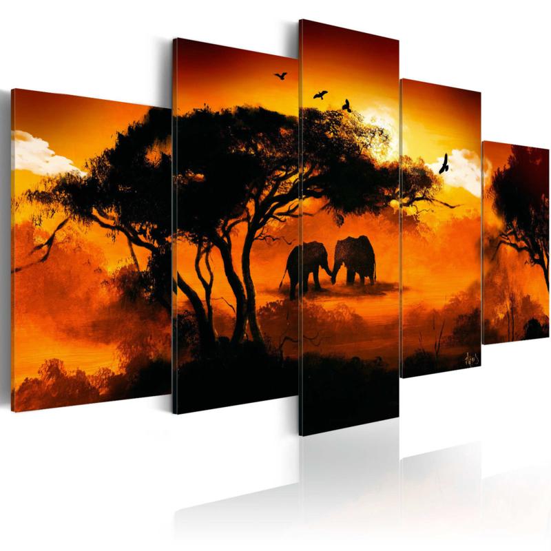 901 Afrika Natuur Olifant