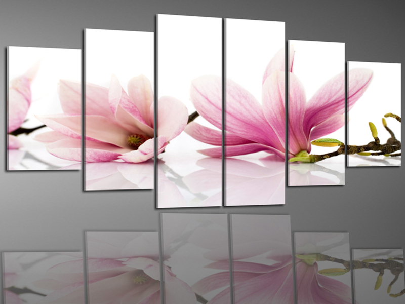 Roze Magnolia Bloemen 250x100cm