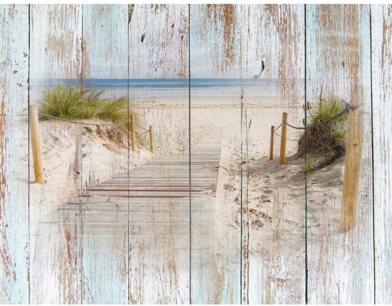 Noordzee Strandpad Duinen nr 179