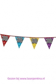 Vlaggenlijn Holographic '30'
