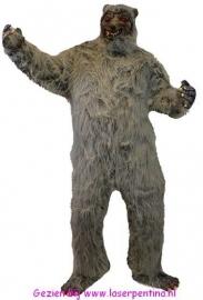 Wolfspak grijs