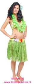 Hawaii rok groen
