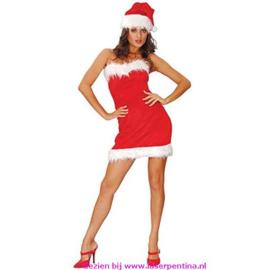 Kerstvrouw Santa Lady
