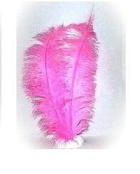 Spadonis Veer pink