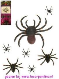 Spinnen per 7 stuks