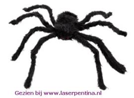 Spin zwart 70 cm