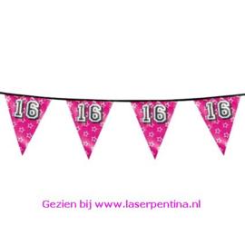 Vlaggenlijn  Holographic 'Sweet 16'