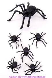 Spinnen 8 cm