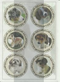 BOBO 100-3313-KN Honden