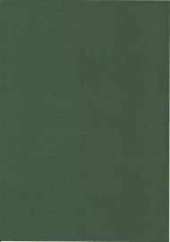 Kraft 100-899-Quadratisch grün