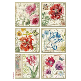 DFSA4383-Stamperia Rice Paper- A4 -Botanic Flower Cards