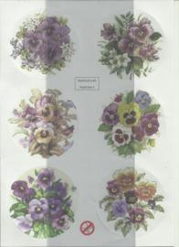 BOWOC 150-2203-UV viooltjes uitdrukvel