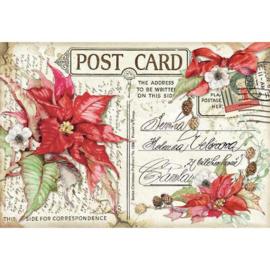 DFS418-Stamperia Rice Paper- 48x33cm- Poinsettia