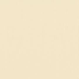 2928-002-Florence • Cardstock texture 30,5x30,5cm Raffia