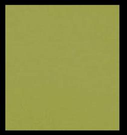 Scv 250-20096  30,5 X 30,5 cm. Karton oliviëngrün glad 25 Bogen